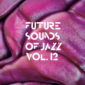 VARIOUS - Future Sounds Of Jazz Vol 12