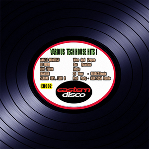 MONTESU, Angelo/DJ SELIM/ERIC YEDIM/MAMULA/SERDAR ORS/ESER C - Tech House Hits I