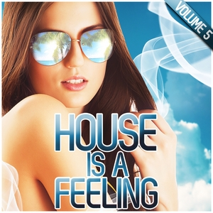 VARIOUS - House Is A Feeling Vol 5