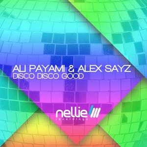 PAYAMI, Ali/ALEX SAYZ - Disco Disco Good