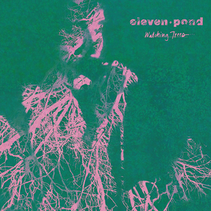 ELEVEN POND - Watching Trees