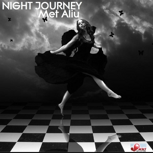 MET ALIU - Night Journey
