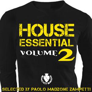 VARIOUS - House Essential Vol 2