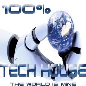 VARIOUS - 100% Tech House The World Is Mine (Analogue Journey Into Techno Electro Minimalistix)