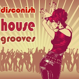 VARIOUS - Disconish House Grooves (Ultimate Dancing Disco House Clubbers)
