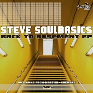 STEVE SOULBASICS - Back To Basement