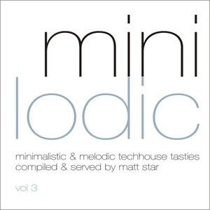 VARIOUS - Minilodic Vol 3