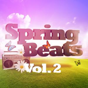 VARIOUS - Spring Beats Vol 2