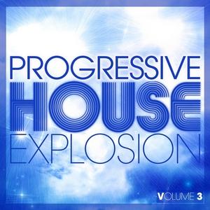 VARIOUS - Progressive House Explosion Vol 3