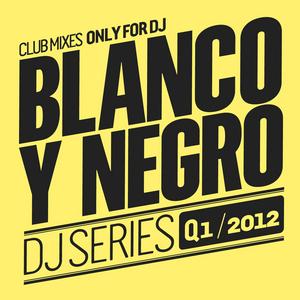 VARIOUS - Blanco Y Negro DJ Series Q1 2012