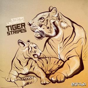LAZAREVIC, Stefan - Tiger Stripes