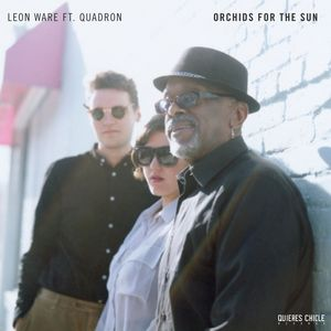 WARE, Leon - Orchids For The Sun/Hold Tight