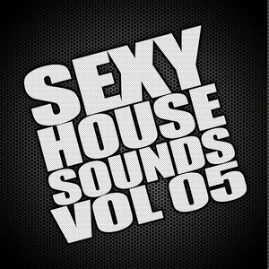 VARIOUS - Sexy House Sounds Vol 5
