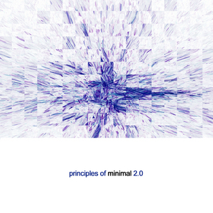 VARIOUS - Priniciples of Minimal 2.0