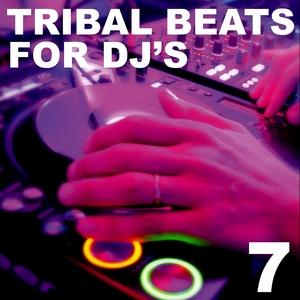 VARIOUS - Tribal Beats For DJ's Vol 7