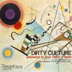 DIRTY CULTURE - Harm (Remixes Part 2)