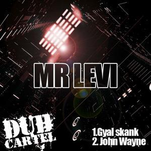 MR LEVI - Mr Levi