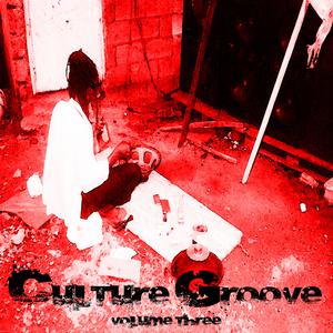 VARIOUS - Culture Groove Vol 3 Platinum Edition