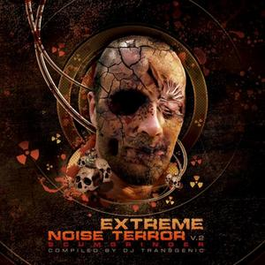 VARIOUS - Extreme Noise Terror Vol 2