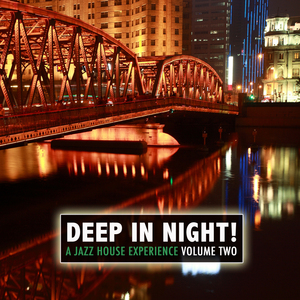 VARIOUS - Deep In The Night!, Vol.2 - A Jazz House Experience