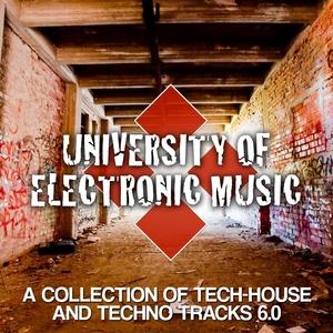 VARIOUS - University Of Electronic Music 6 0