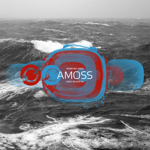 AMOSS - Tripped