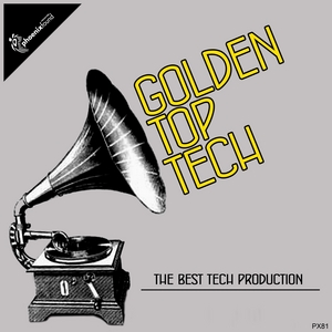 VARIOUS - Golden Top Tech (The Best Tech Production)