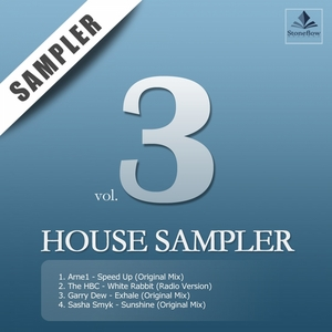 DEW, Garry/THE HBC/ARNE1/SASHA SMYK - Stoneflow House Sampler 03