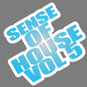 VARIOUS - Sense Of House Vol 5