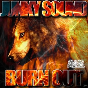 JUNKY SOUND - Burn Out