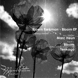 BJOERN PARKMAN - Bloom EP