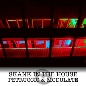 PETRUCCIO & MODULATE - Skank In The House