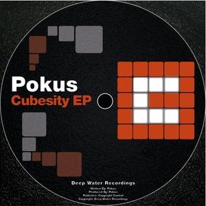 POKUS - Cubesity