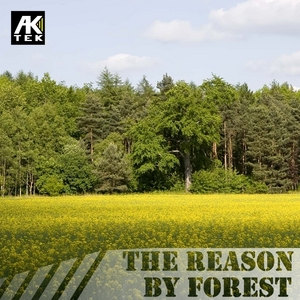 FOREST - The Reason