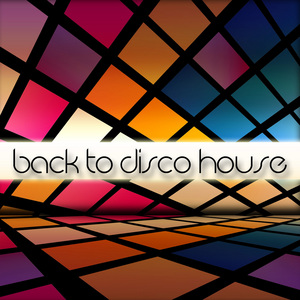 VARIOUS - Back To Disco House