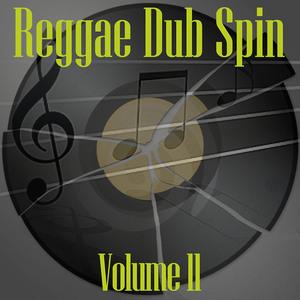 VARIOUS - Reggae Dub Spin Vol 11