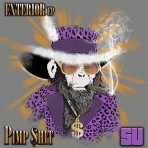 PIMP$HIT (DF) - Exterior EP