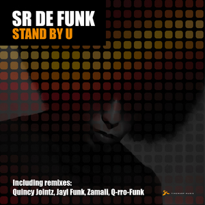 SR DE FUNK - Stand By You