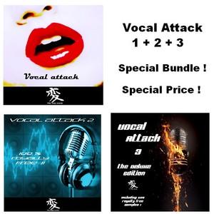 WIDE RANGE ELECTRIC - Vocal Attack Special Bundle (Sample Pack WAV)