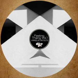 DAN SOLO/FELLY SOULFURIOUS/JUAN SOTO & AKAASH/LA ROYALE - Feeling Thang Vol 1