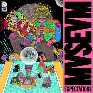 MVSEVM - Expectations