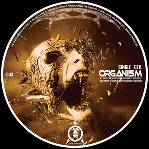 SINGLE CELL - Organism