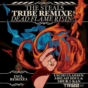 STEALS, The - Dead Flame Rising