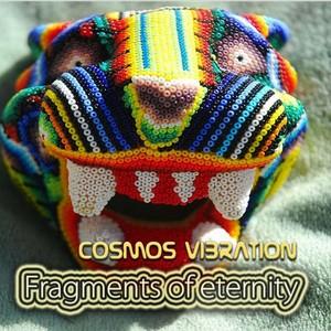 COSMOS VIBRATION - Fragments Of Eternity