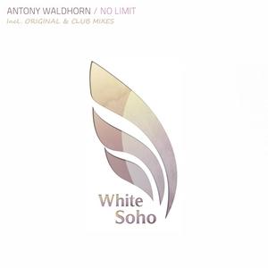WALDHORN, Antony - No Limit