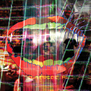 ANIMAL COLLECTIVE - Today's Supernatural