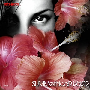 ANGEL D/B&S PROJECT/M2FUNK - Summethicar Vol 02