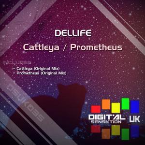 DELLIFE - Cattleya/Prometheus