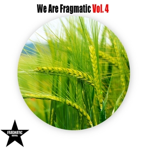 VARIOUS - We Are Fragmatic Vol 4