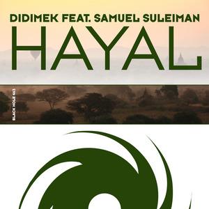 DIDIMEK feat SAMUEL SULEIMAN - Hayal